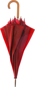 Red Logo Umbrella - Wood Frame