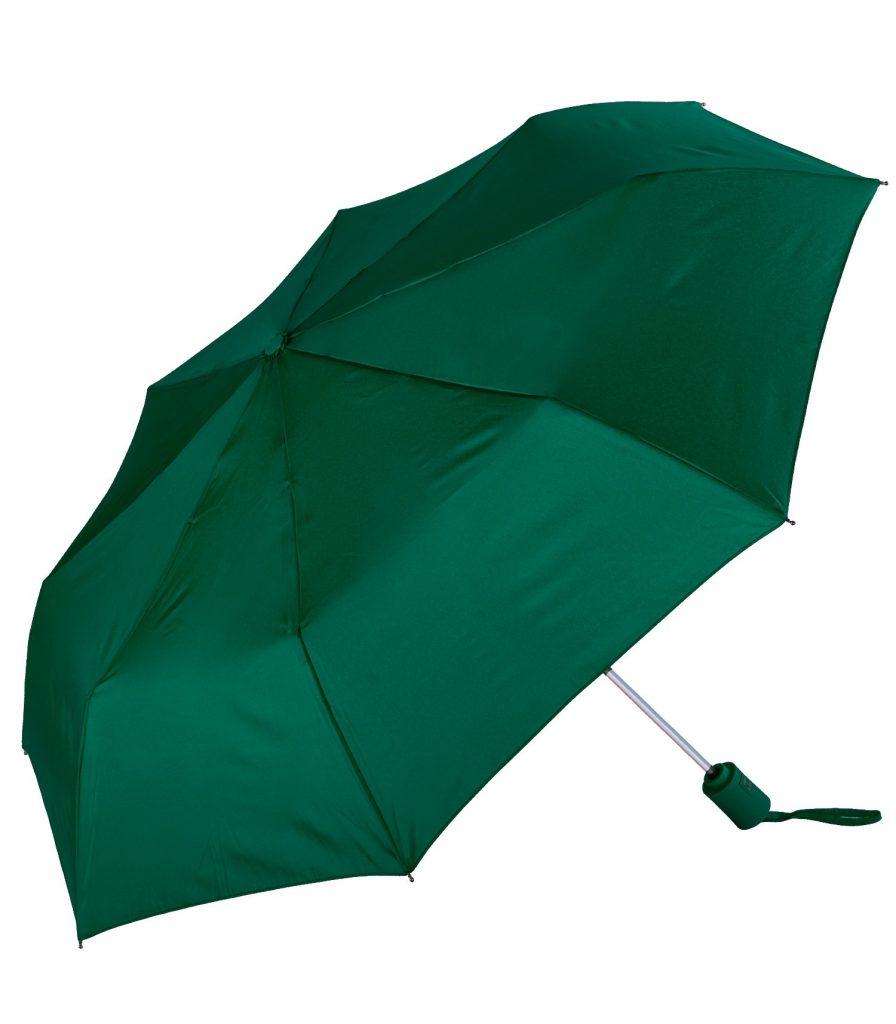 Auto Open Compact Umbrella Hunter